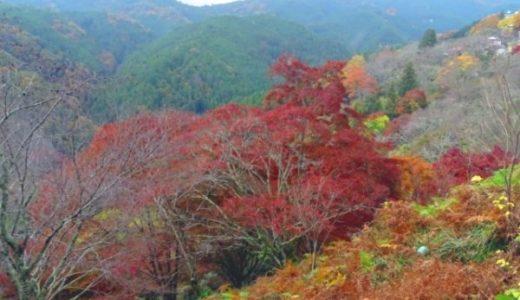 【奈良の紅葉】人気ランキング3選!有名だけど本当に綺麗?