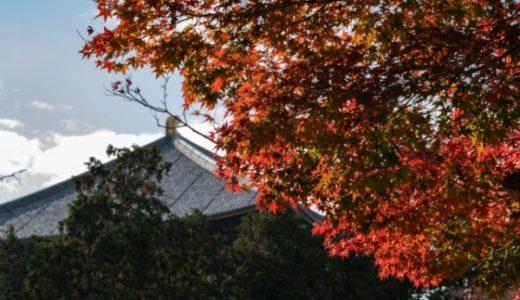 【穴場あり】奈良公園の紅葉マップ!おすすめスポット12選と見頃