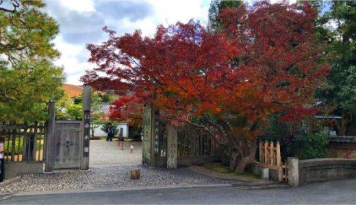 名勝依水園の紅葉は11月が見頃!秋の見どころは十月桜や萩もあり